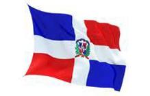 Flag 9